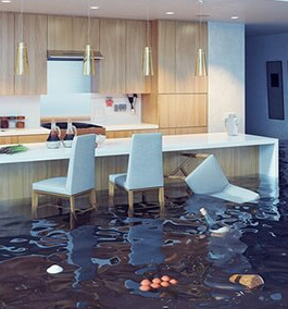 Water/Flood Damage