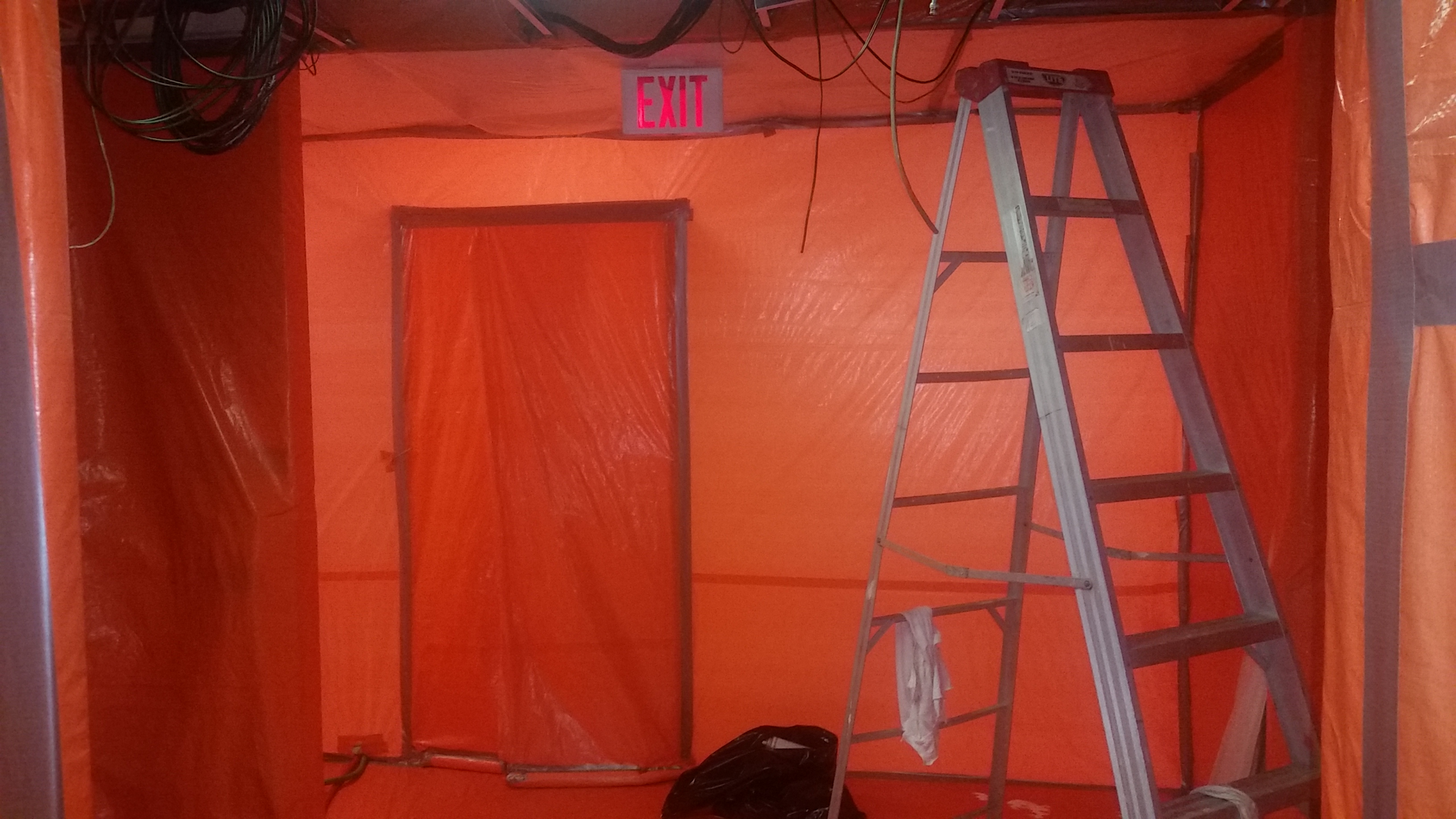 Mold Services, Mold Remediation