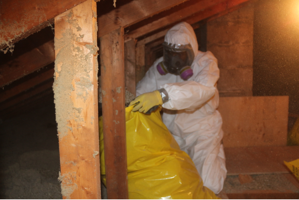 asbestos removal in burlington, asbestos abatement in burlington, asbestos testing in burlington