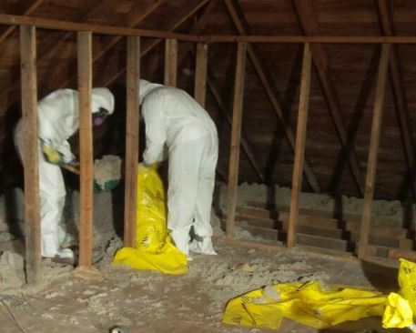 Know How To Handle Asbestos Removal In Toronto