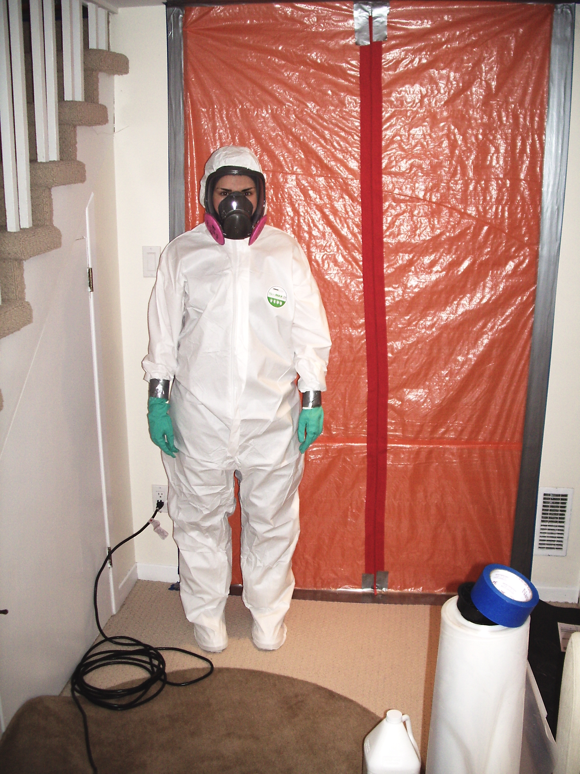 PPE-Personal Protective Equipment for Mold Removal Services