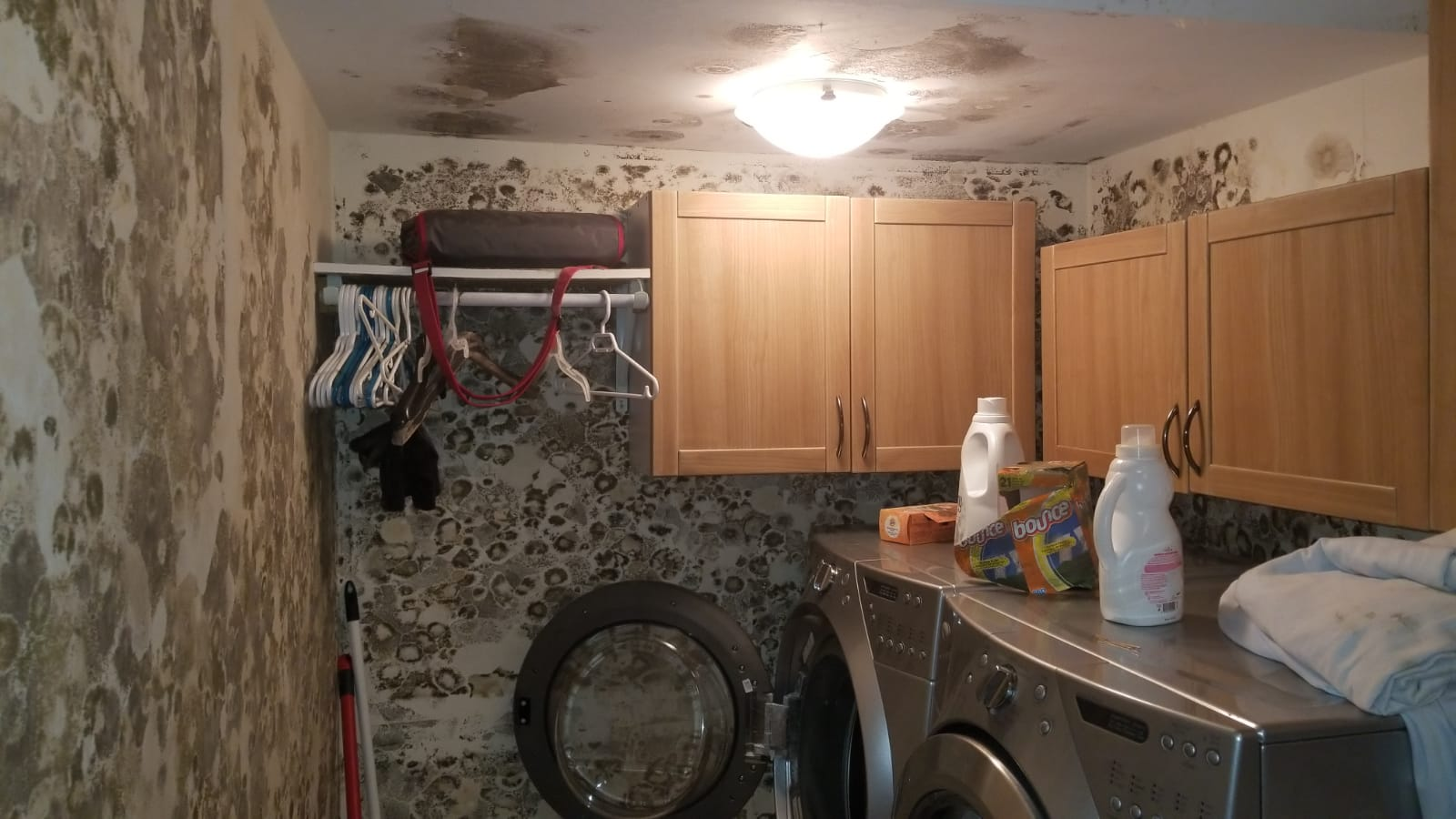 mold removal in dorval, mold remediation in dorval, mold inspection in dorval, getting rid of mold, mold dangers in dorval