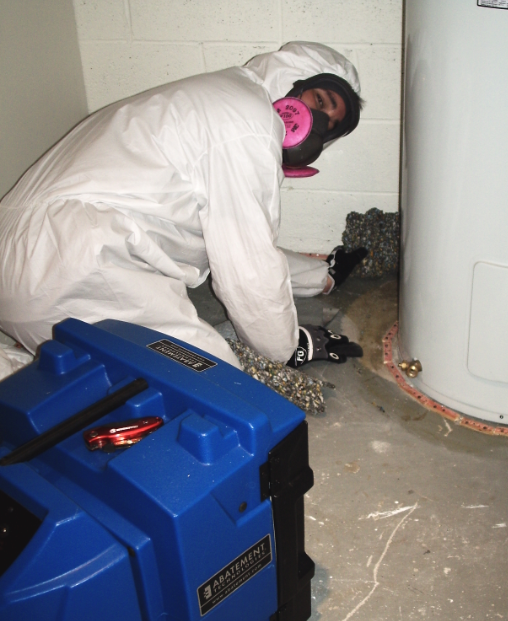 mold removal, mold remediation, mold testing, mold, mildew, mold in toronto
