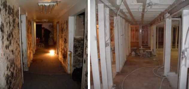 mold removal in coburg, mold inspection in coburg, mold remediation coburg
