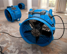 Water Damage Restoration, Water Damage Emergency, Air Humidifier, Air Scrubber